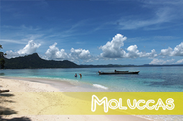 The Moluccas