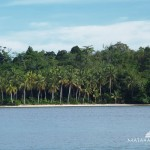 Raja Ampat Islands Snorkeling & Diving 5
