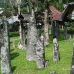 Tana Toraja Tour 1
