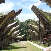 Tana Toraja Tour 2