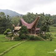 Tana Toraja Tour 5