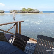 Wakatobi Diving 3