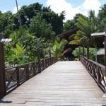 Wakatobi Diving 4