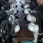 Wakatobi Diving 7